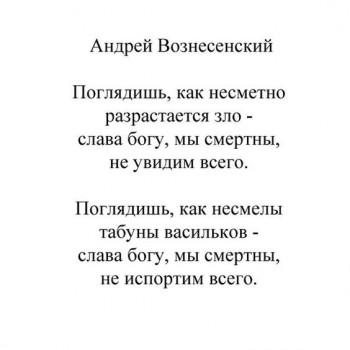 Поэзия - зацепило - i (46).jpg