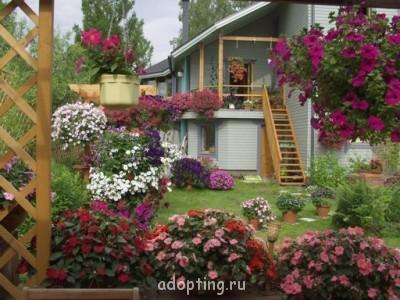 Огородный сезон - qCPnIjV76gQ.jpg