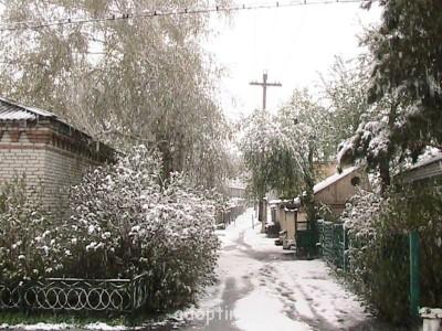 Весенняя тропинка к дому - IMG_0536.jpg