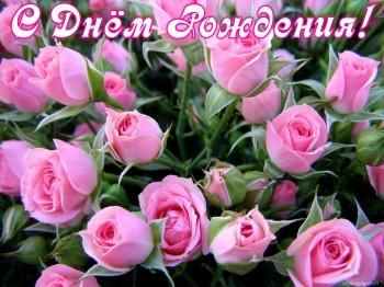 С днём рождения Ксюша  - rozirozovy-700x524.jpg