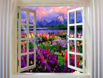 Доброе утро - приятных снов  - 31f00ebc9cdb3cc33b296230aac1fbe2_808_606_1.jpg