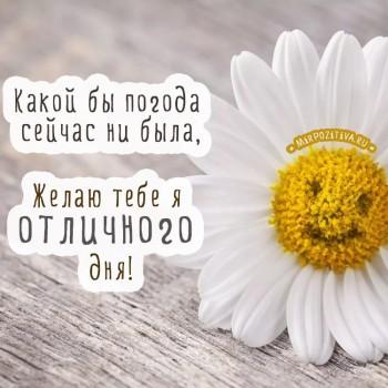 Доброе утро - приятных снов  - Солнечный день.jpg