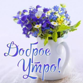 Доброе утро - приятных снов  - krasivaya-kartinka-dobroye-utro-37.jpg