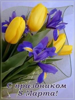 Хочу поздравить - IMG-6b049269493ee3f93ab72f8f0e5e3e4e-V.jpg