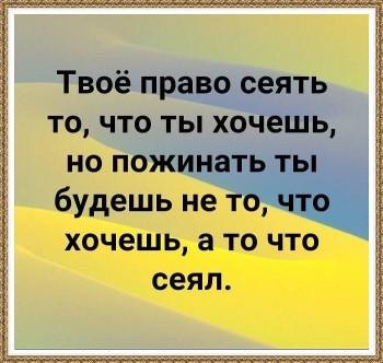 Мудрые слова - 53643421_2199124176812755_3394065366991765504_n.jpg