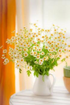 Доброе утро - приятных снов  - i6Gg_8HyzOM.jpg